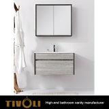Шкафы раковины ванной комнаты с роскошной конструкцией Tivo-0022vh
