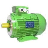 Motor industrial de la eficacia de la serie Y2 del motor eléctrico trifásico estándar de la CA