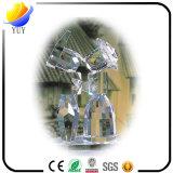 Schön für Kristallart-Bildschirmanzeige-Geschenk für Funktionseigenschaft-Ware zur Innenausstattung und Kristall-Dekoration für förderndes Fertigkeit-Geschenk