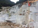 Bloques de mármol gris de mármol gris nuevo de Praga para los proyectos
