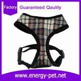 Form-Hund kleidet Haustier-Zubehör der lustigen Verdrahtung