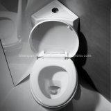 Cabinet d'aisance faisant le coin en deux pièces de salle de bains de toilette de lavage à grande eau de toilette (Ml-9010