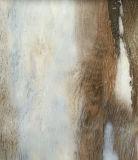 2017 صمّم لون جديدة [بفك] فينيل [فلوورينغ تيل]/لوح