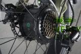 싼 건전지에 의하여 숨겨지는 가벼운 전기 자전거 350W 36V