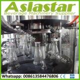 De automatische Lijn van de Verpakking van de Vullende Machine van het Vruchtesap van de Fles van het Glas