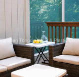 新式のHDPE Personal 3つの高さAdjustable Table キャンプ白い庭