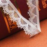 나비 디자인 레이스 직물과 프랑스 스위스인 레이스