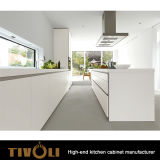 Шкафы хранения изготовленный на заказ Desginer кухни высокого качества Tivo-0184h