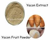 100% natürliches AntioxidansYacon Auszug-Puder-4:1 ~20: 1,  Fructooligosaccharide