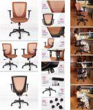 現代設計事務所の椅子の会議の網の椅子