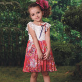 Mini alineadas de los niños de la manera de Smocked del cortocircuito lindo del diseñador para las muchachas