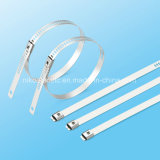 Serre-câble simple de blocage de picot d'échelle enduite d'époxyde à haute résistance d'acier inoxydable