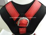 Il cablaggio pieno di protezione di sicurezza del corpo si conforma En361