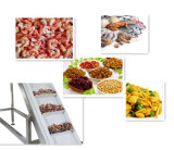De Snacks die van het roestvrij staal de Transportband van de Riem voor Industrie van het Voedsel opheffen