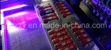 自動シルクスクリーンの印字機の価格