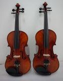 Instrumentos musicales avanzados al por mayor del alto grado de China Sinomusik 4/4 violín