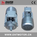 熱保護と中国のブレーキと電気モーター