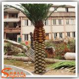 工場庭の装飾のための直接人工的なナツメヤシの木