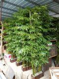 Бамбук напольной пользы искусственний Bamboo для декора сада