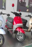 Scooter elétrico 800W, bicicleta elétrica