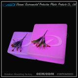 Waterdichte Kleur die de LEIDENE Kruk van het Meubilair in 40cm Grootte veranderen
