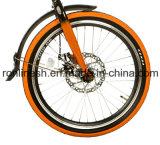 12kgs, 20in alla moda bicicletta piegante della bici del blocco per grafici della lega di 6 velocità/bici compatta di Alluminum/bicicletta piegata/bici pieghevole