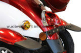 Ciclomotor eléctrico de Trike de la movilidad con el rectángulo movible para el viejo hombre