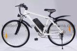 منخفضة [موق] 18650 [6س5ب] [إ] درّاجة بطارية 24 فولت [لي-يون] [بتّر/] [ليثيوم بتّري] مع [بيس]