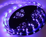 LED ultravioleta UV 395nm 5050 SMD LED luces de tira Blacklight