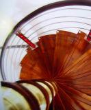 Escalera espiral moderna de la alta calidad elegante
