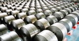 La INMERSIÓN caliente de la hoja de acero galvanizó la bobina de acero