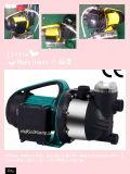 (SDP900-14S) Насос двигателя сада плавательного бассеина нержавеющей стали с фильтром с UL ETL Ce одобрил