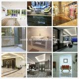 Materiale da costruzione di marmo naturale per la decorazione della parete o del pavimento della costruzione