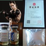 Body BuildingのためのブレンドSteroid USP Standard Testosterone Sustanon 250