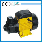 QB60 doméstico 220V 0.5HP Small Vortex Electric Water Pump para a agua potável
