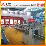 De Machines van de Verpakking van het Hoofdkussen van het roestvrij staal (ZP320)