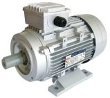 Y2 Series Three Phase Induction Motor (CE Certificated)