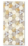 Nuevos azulejos de cerámica de la pared de los estilos 300*600