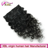 毛のバージンのブラジルの人間の毛髪クリップ毛の拡張のクリップ