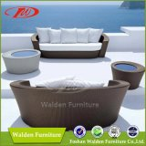 屋外の家具のビーチチェアのChaiseのラウンジの日曜日のLoungerの寝台兼用の長椅子(DH-9568)