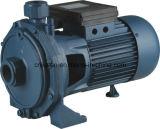 Bomba de água centrífuga 0.3HP de Scm 0.5HP 1HP 1.5HP