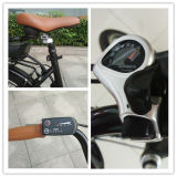 Import-Chinese 26 Inch 7-Speed Electric Bicycle für Adults