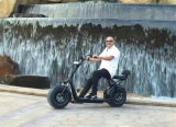 2016 E-Самокат горячего Bike мотоцикла сбывания электрического передний амортизируя 1000W с ценой по прейскуранту завода-изготовителя самоката Eletrice