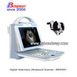Escáner de color Veterinaria Ultrasonido Doppler para Equino / Bovino