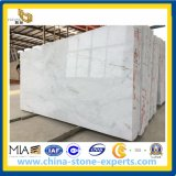 Castro Polished White Marble pour Slabs, Floor Tiles (YYAZ)