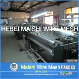 202 Steel di acciaio inossidabile Wire Mesh con 4% Nickel Content