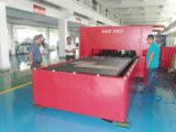 Cortadora de alta velocidad del laser de la fibra del corte de hoja de metal 500W