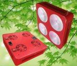 Hohe Leistung 4 PFEILER 300W LED wachsen hellrote und blaue Farbe für das Innenwachsen