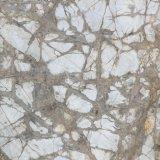 建築材料完全なボディ大理石によって艶をかけられる床タイル(VRP8F011、800X800mm)