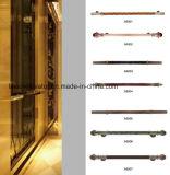 Mrl de Villa van het Glas/de Lift van het Huis voor 3-5 Personen